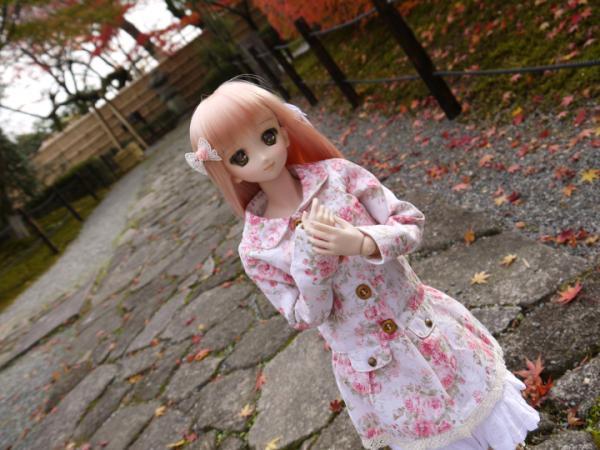 ゆゆぽさんちの姫乃ちゃんのリボン4_convert_20121206233628