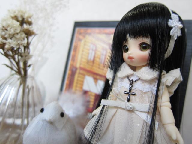 小花ちゃんクロスNCB2