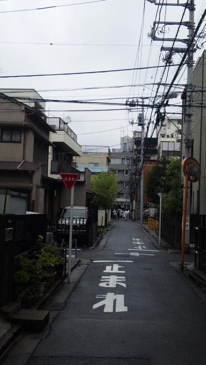 IN  RAIN_20110822