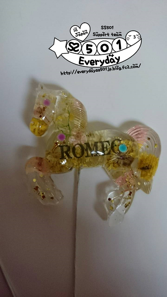 ROMEO 鎖 1109 (9)