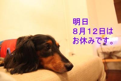 IMG_2470おやすみ