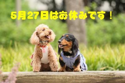 54_20100526141531.jpg
