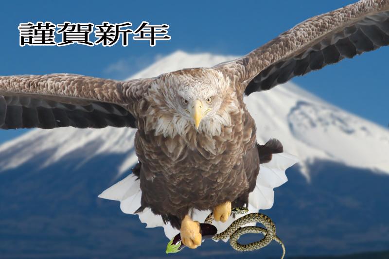 IMG_8301_22.jpg