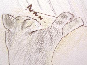 003_convert_20111208163830.jpg