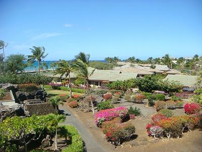 ハワイ島 2013・3・1 011