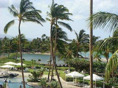 ハワイ島 2013・3・1 013