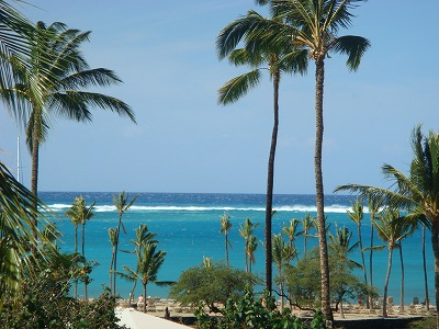 ハワイ島 2013・3・1 014