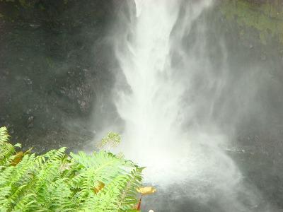 ハワイ島2日目 1日観光 043