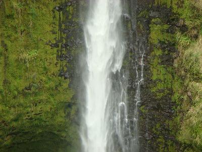 ハワイ島2日目 1日観光 044