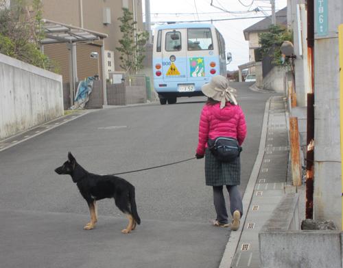 幼稚園の送迎バスも