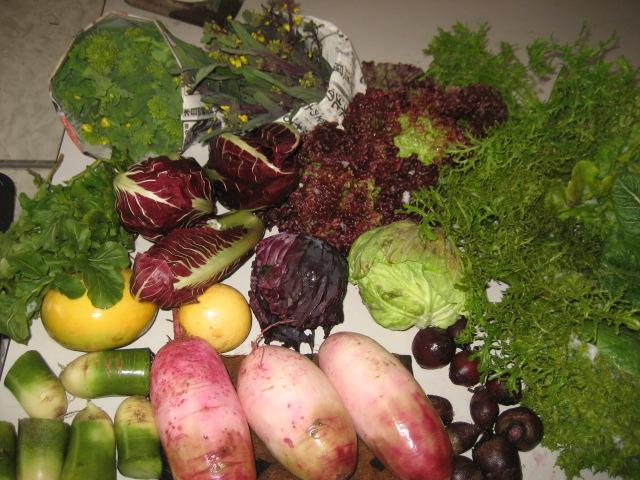 出荷の野菜