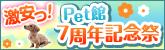 0315_pet_tieup_dog-kan_bn_16550.jpg