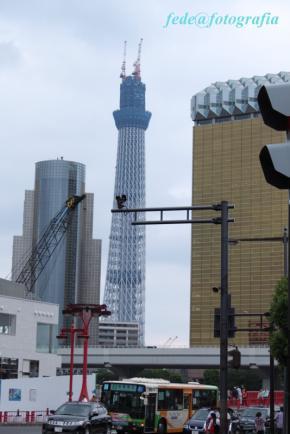 東京観光5