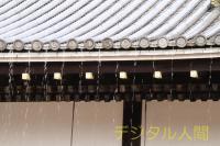仁和寺文化財2013-39