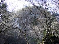 20110109b.jpg