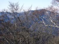 20110109i.jpg