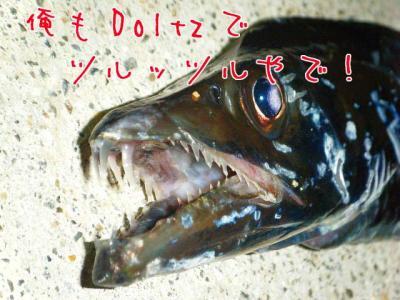s-DSCF4910_2.jpg