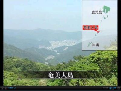 satsumaegi2.jpg