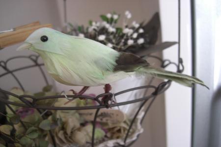 鳥2.10