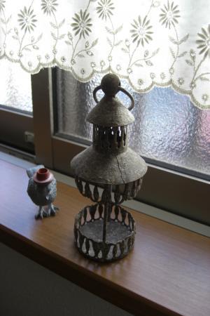 帽子鳥2011.1