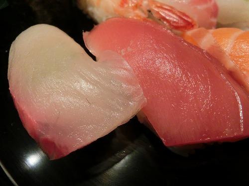 s-魚たつ5CIMG9757