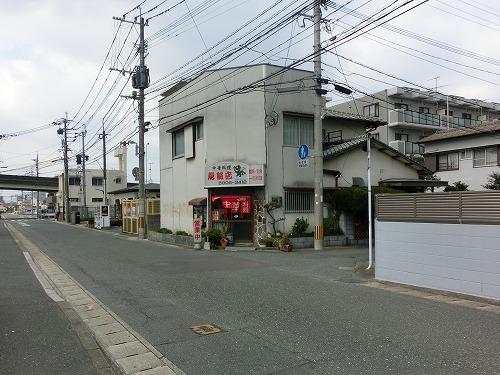 s-龍外見CIMG9903
