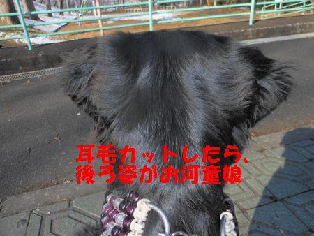 004_20120129010944.jpg