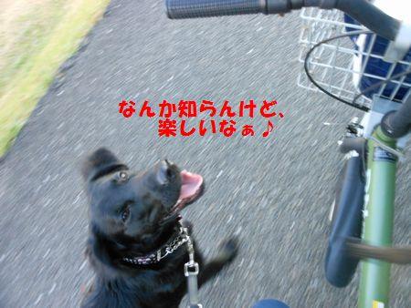 032_20111213011222.jpg