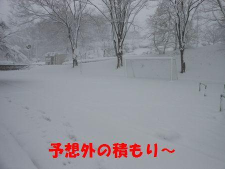 091_20120301001258.jpg