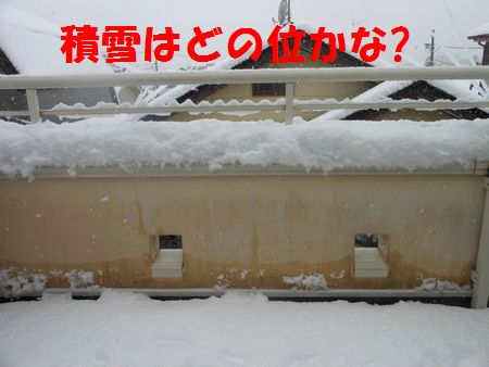 126_20120301001651.jpg