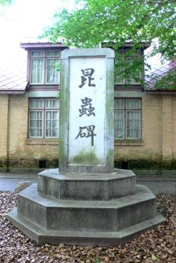 名和昆虫記念館