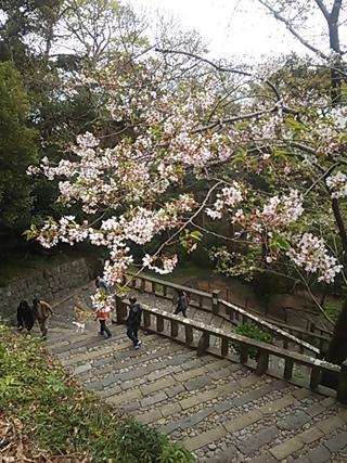 2013-03-31 久能山東照宮