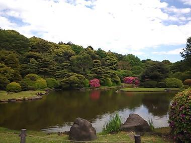 2013-05-03 小石川植物園