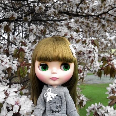 桜雨 すぅ1