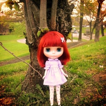 夕暮れ桜3
