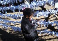 328_convert_20110103082240.jpg