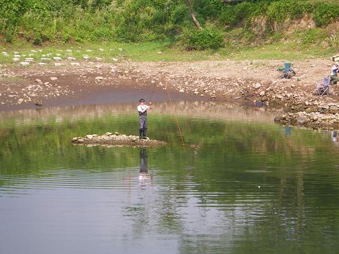 シャローの水中島が露出
