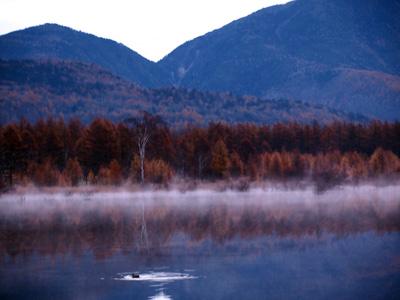 貴婦人と小田代湖
