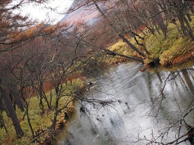 晩秋の湯川