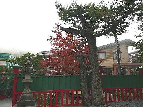 mtfuji201010h12.jpg