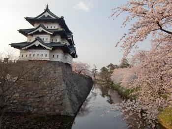 2010城と桜