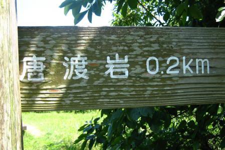 キヌガサタケ 167