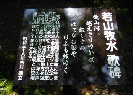 ヒメユリ 093