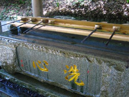 ヒメユリ 073
