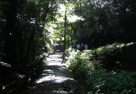 清水山と水害 016