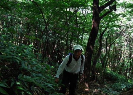 井原山 103
