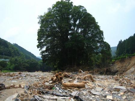 星野村の水害 082