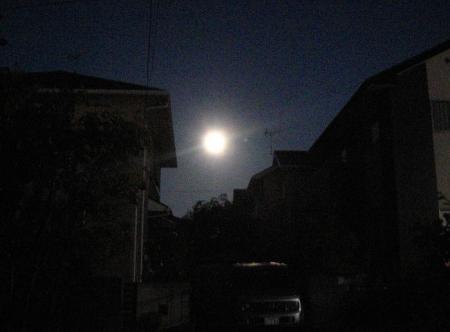 満月と赤とんぼ 010