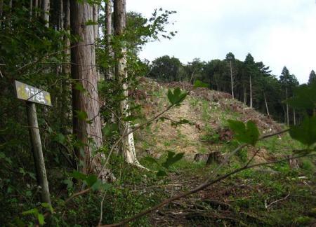 清水・カラ迫岳 177