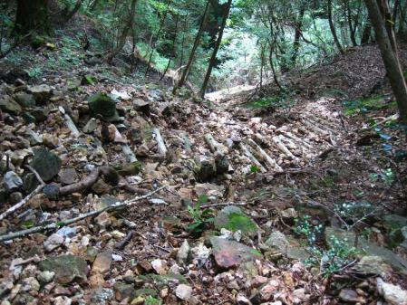 清水・カラ迫岳 159